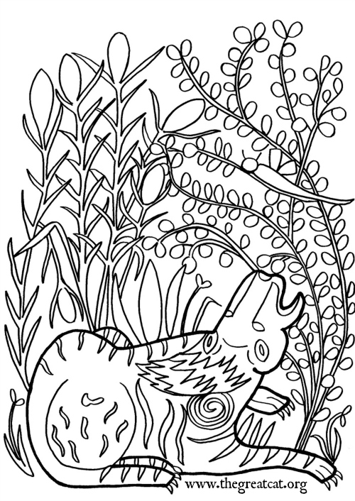 500x706 Medieval Cats Coloring Book For Cat Lovers The Great Cat