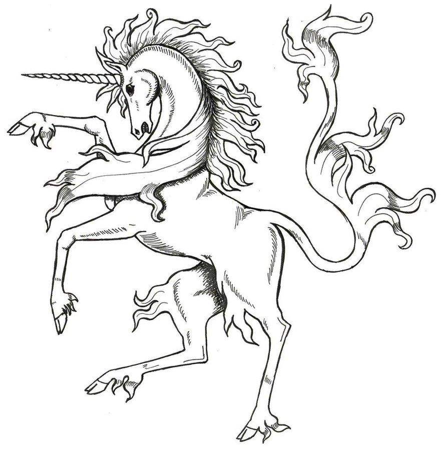 881x907 Medieval Unicorn By Tana San