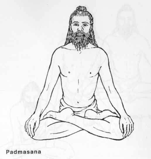 516x542 Padmasana Or (Lotus Pose) Yoga Teacher Training In Rishikesh