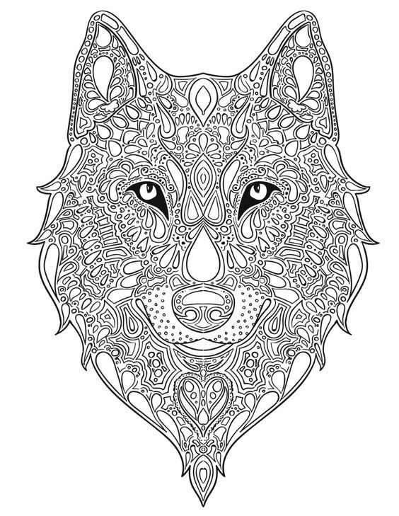 564x729 Coloring Is