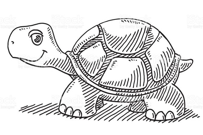 671x447 Coloring Pages Cartoon Turtle Drawing How To Draw A Step 6