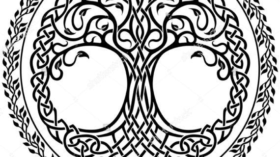 570x320 Celtic Tree Of Life Drawing Vector Ornament, Decorative Celtic