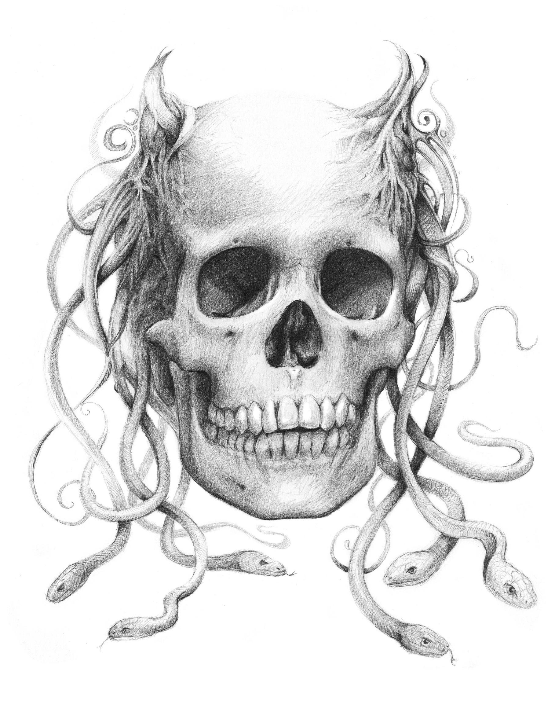 the best free medusa drawing images download from 300 free drawings of medusa at getdrawings