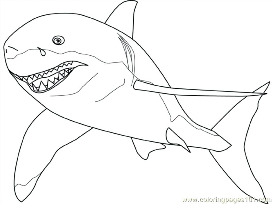 940x704 Megalodon Coloring Pages Impressive Coloring Pages Of Sharks Cool