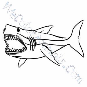 300x300 Megalodon Shark Coloring Pages