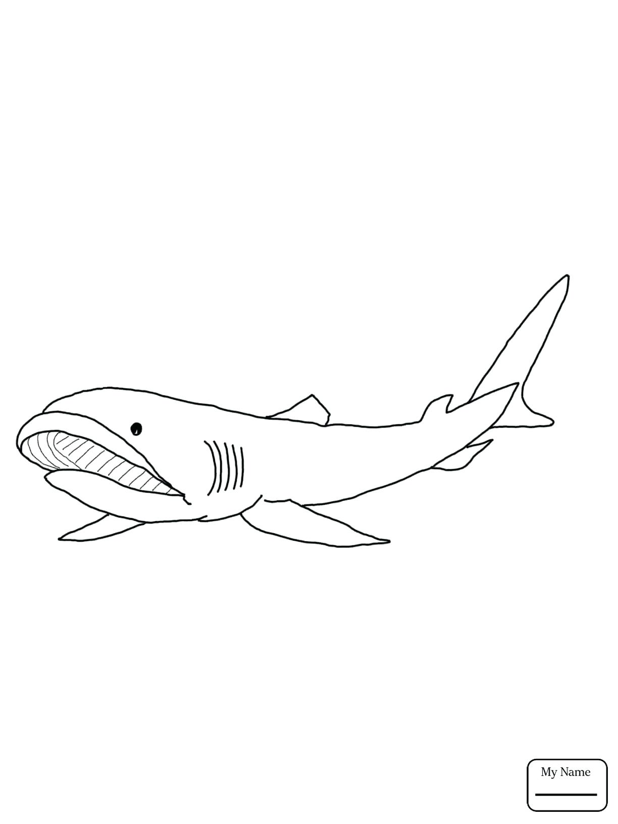 1224x1632 Coloring Megalodon Shark Coloring Pages