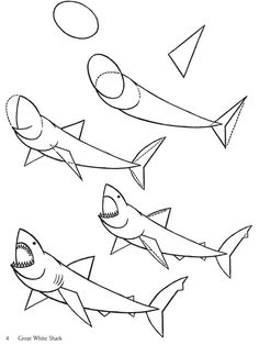 236x314 How To Draw Megalodon, Megalodon Shark Step 5 Drawing References