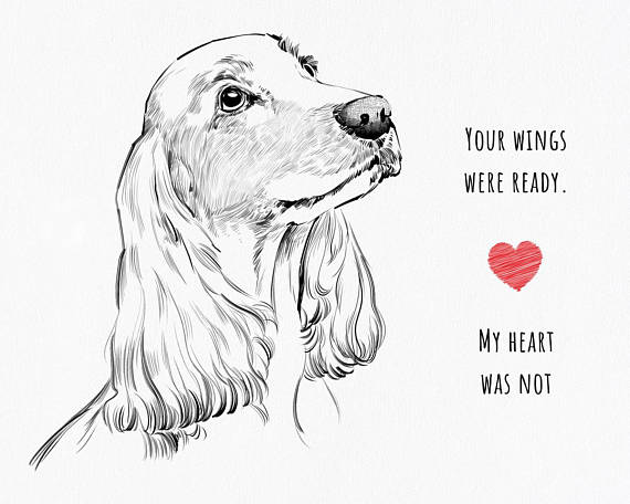 570x456 Custom Pet Drawing Custom Pet Portrait Dog Memorial Cat