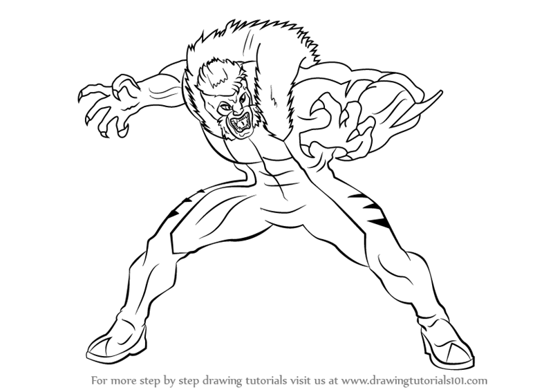 800x567 Learn How To Draw Sabretooth From X Men (X Men) Step By Step