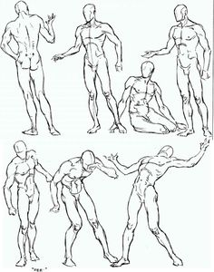 236x300 Copy's And Studies Kate Fox Male Body's Part 4 By Wonderingmind23