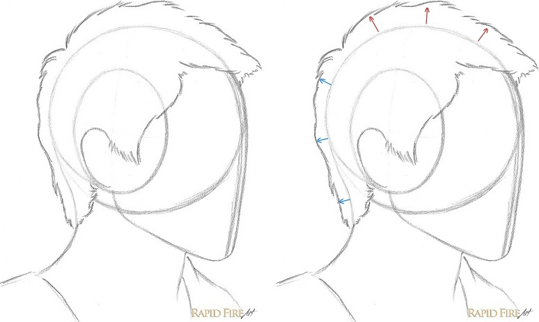 774x463 How To Draw Short Hair (Very Detailed) Rapidfireart