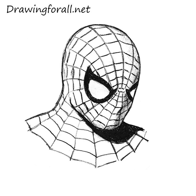800x800 Gallery Spiderman Drawing Face,
