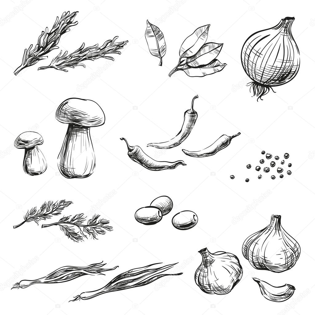 1024x1024 Spices, Herbs, Condiments And Vegetables Icons Hand Drawing