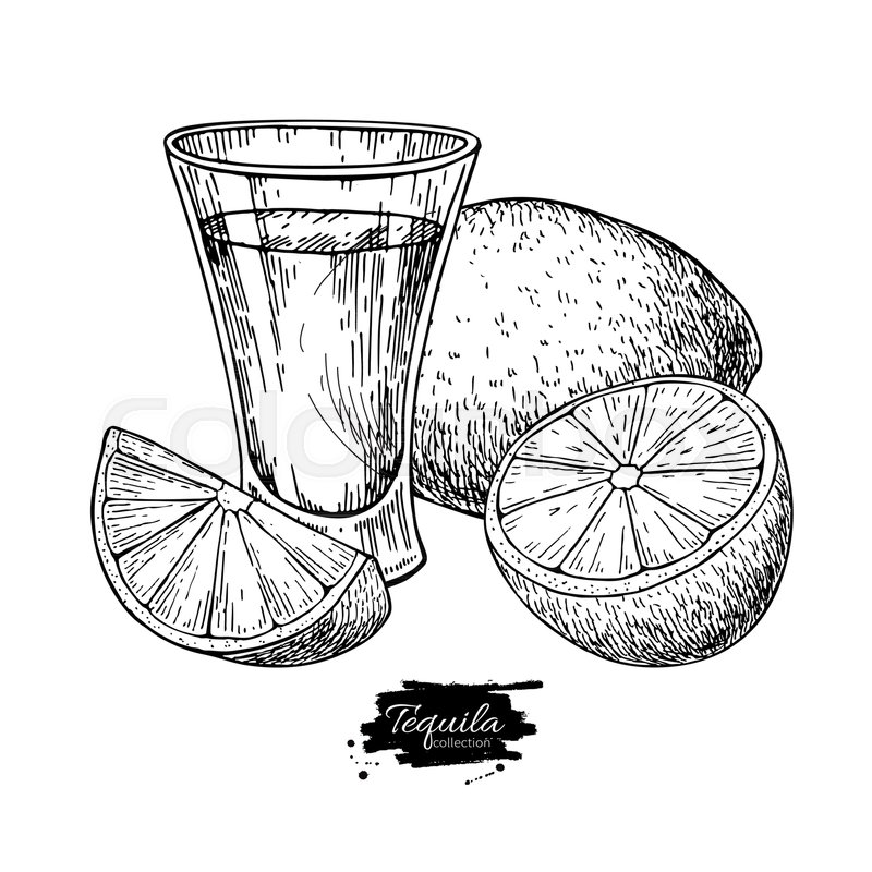 800x800 Tequila Shot Glass With Lime. Mexican Alcohol Drink Vector Drawing