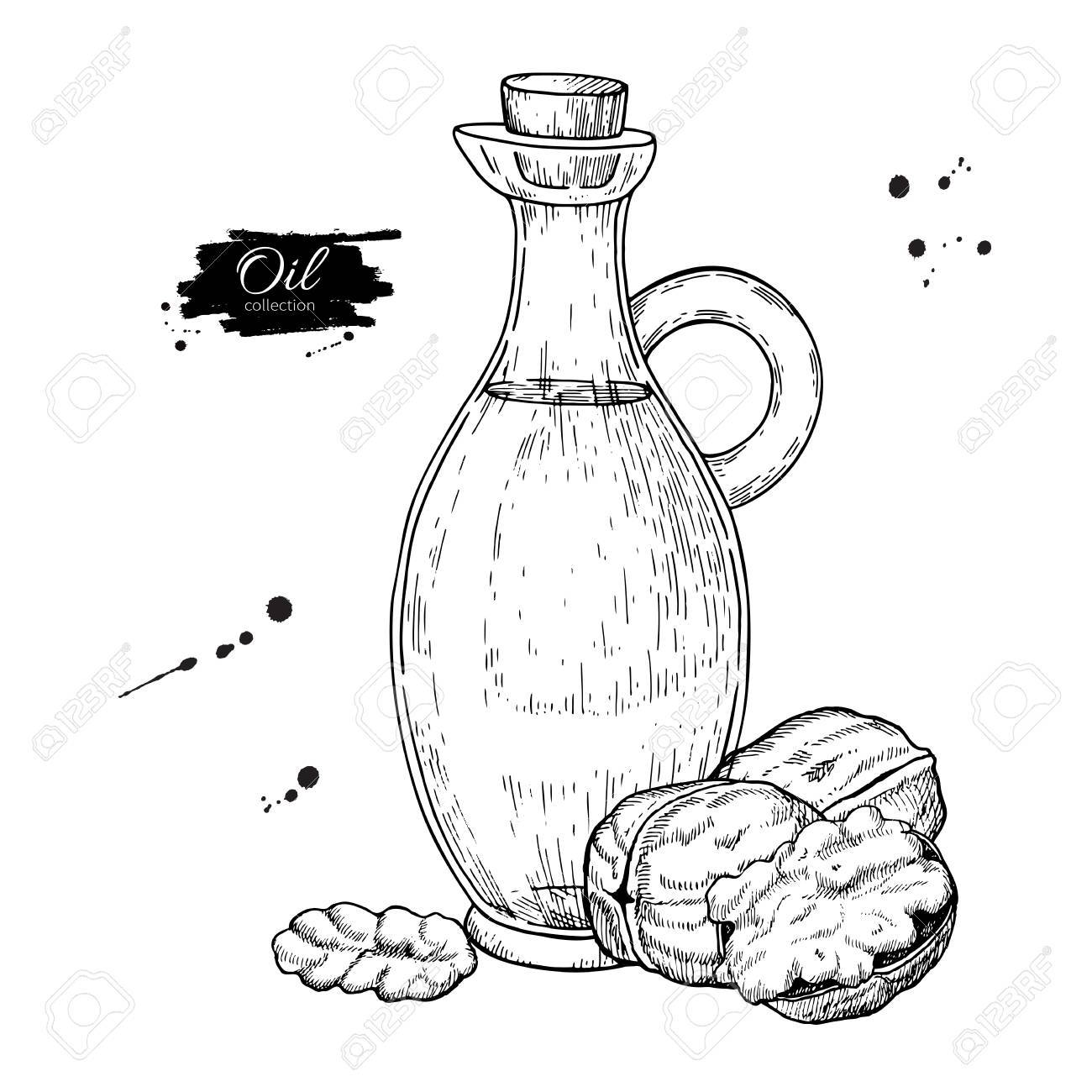 1300x1300 Bottle Of Walnut Oil, Vector Hand Drawn Illustration, Glass