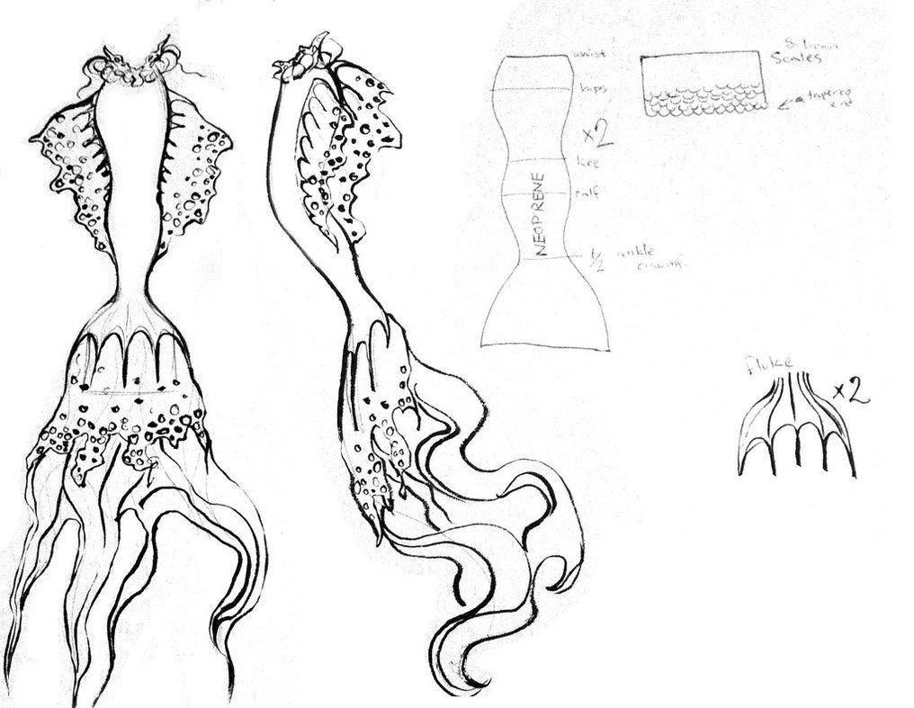 1016x787 Mermaid Tail Concept By Jessicadru