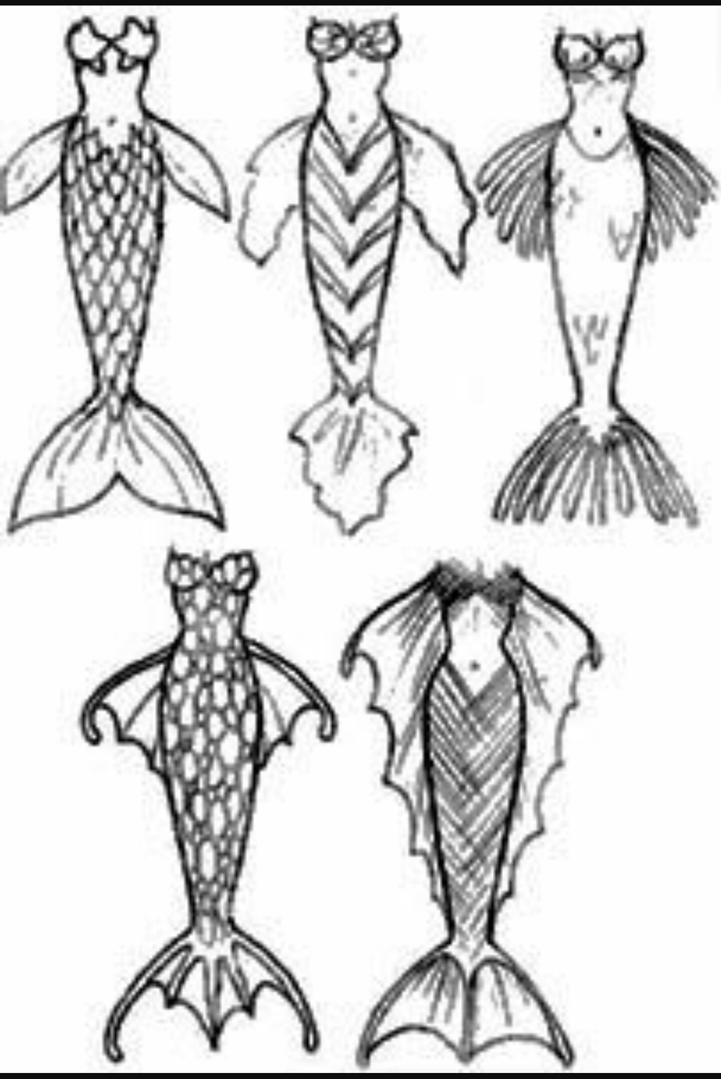 Mermaid Tail Drawing at GetDrawings | Free download