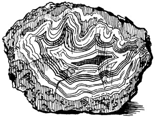 320x246 Drawn Rock Metamorphic Rock