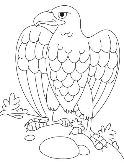 420x557 Eagle Color Page Bald Eagle Coloring Page Plus Hungry Bald Eagle