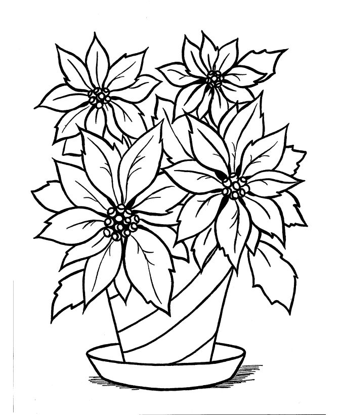 Mexican Flowers Drawing at GetDrawings   Free download