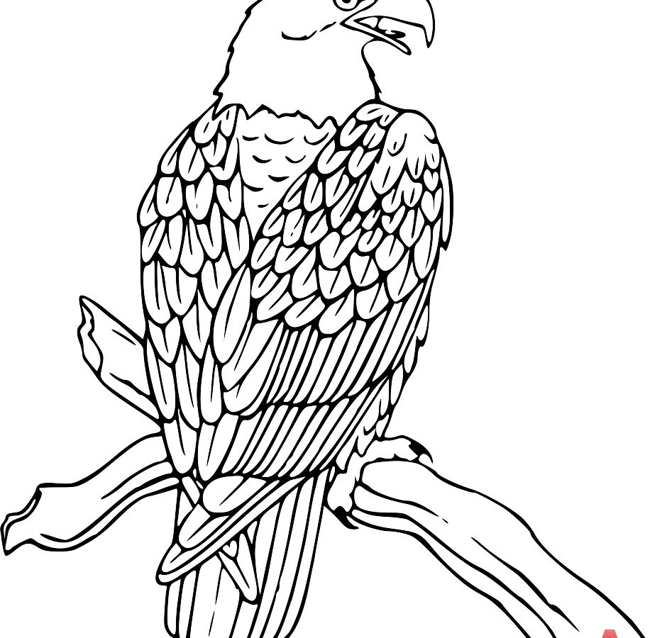 940x900 Mexican Eagle Coloring Pages Printable Mexican Designs Coloring