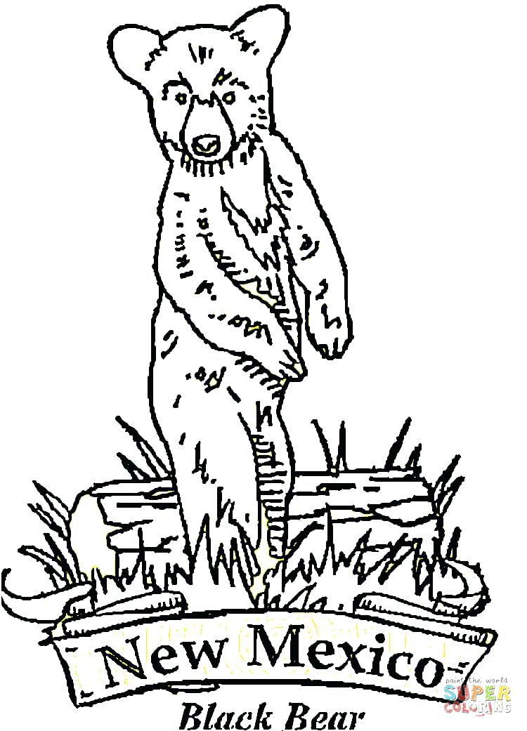 750x1041 New Mexico Coloring Pages Flag Of Coloring Page Awesome Coloring