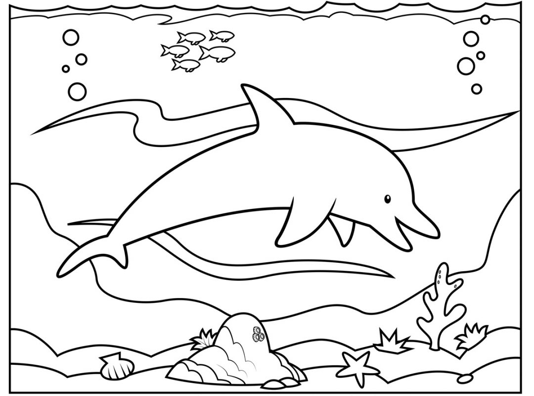 1080x800 Dolphins Coloring Pages Free Printable Animals Dolphin Sheets