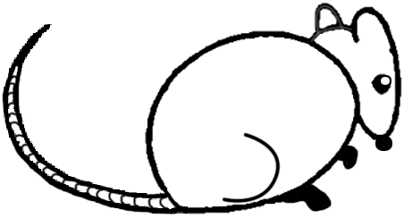 452x244 Big Guide To Drawing Cartoon Mice With Basic Shapes For Kids
