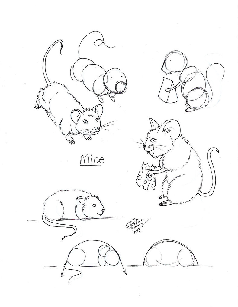 788x1014 Draw Mice By Diana Huang