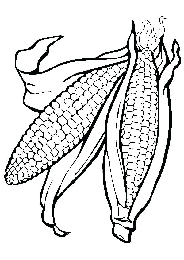 600x847 Ears Coloring Page Corn Ears Picture Coloring Page Mickey Mouse