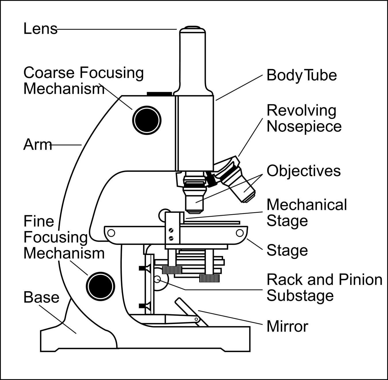 Microscope drawing and label at getdrawings free for personal 1350x1325 diagram compound microscope diagram and functions ccuart