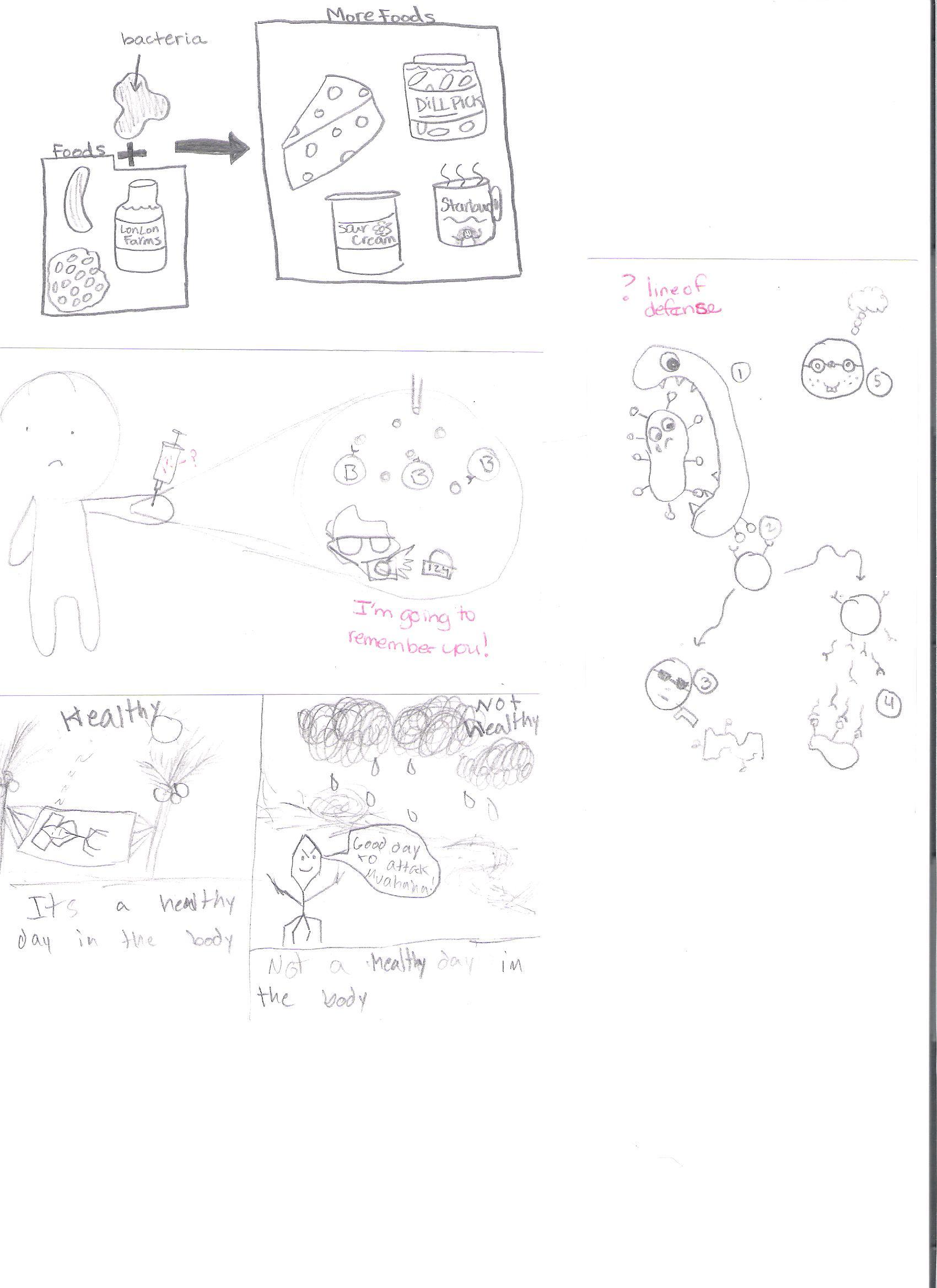 microscope drawing worksheet at getdrawings com