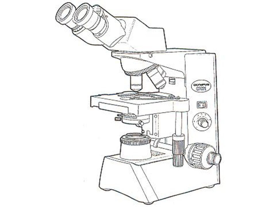 960x720 The Microscope. Why Do We Use A Microscope Many Things Are
