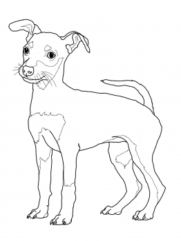 262x350 Miniature Pinscher Puppy Coloring Page Super Coloring Dogs