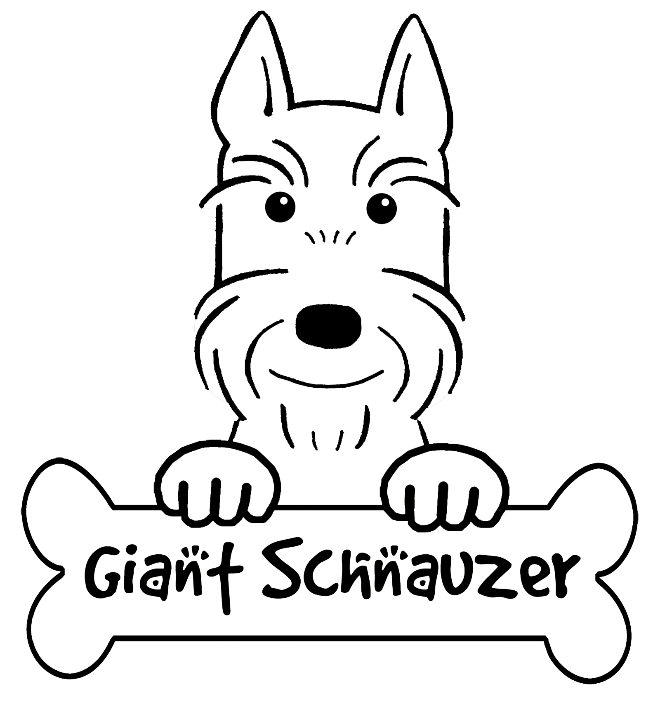 660x705 Schnauzer Dog Coloring Pages