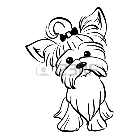 450x450 Sketch Funny Dog Miniature Schnauzer Breed Sitting Breed Hand