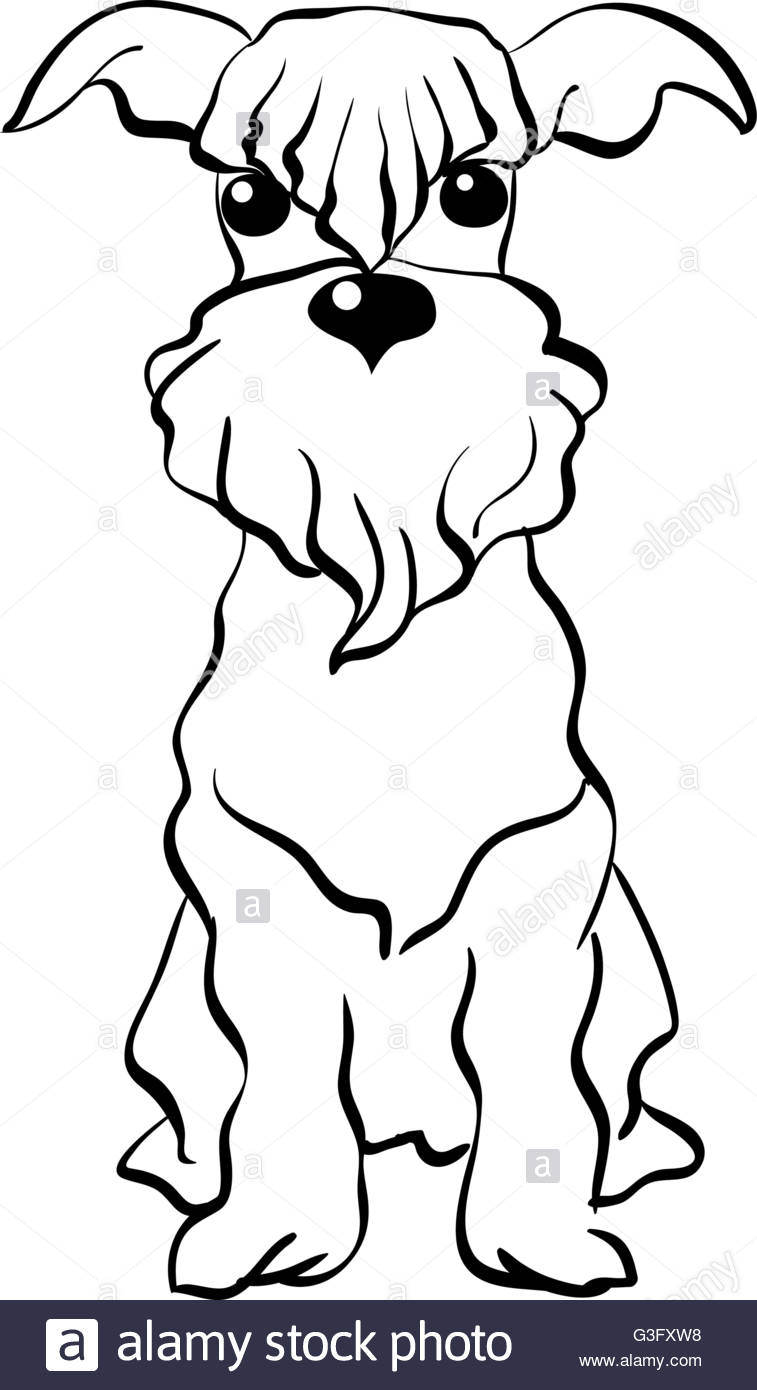 757x1390 Vector Sketch Miniature Schnauzer Dog Sitting Stock Vector Art