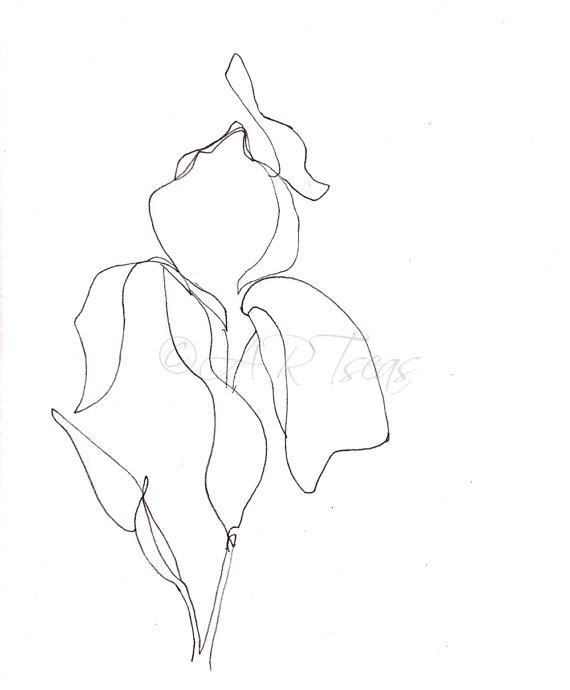 Minimalist Drawing