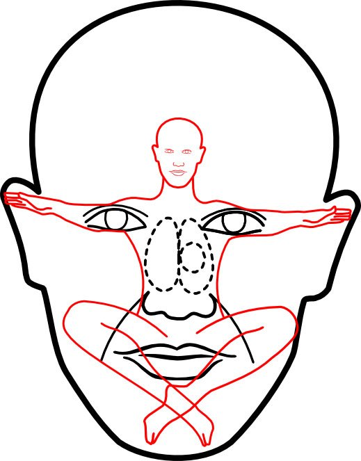 519x663 The Face As A Mirror Of The Body Balancing Touch Reflexology