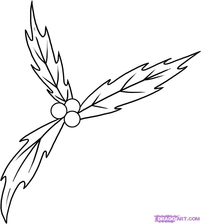 851x947 How To Draw A Mistletoe Group