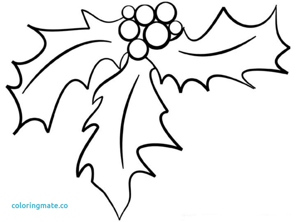 1024x768 Mistletoe Coloring Pages Fresh Coloring Pages Resource Type Super