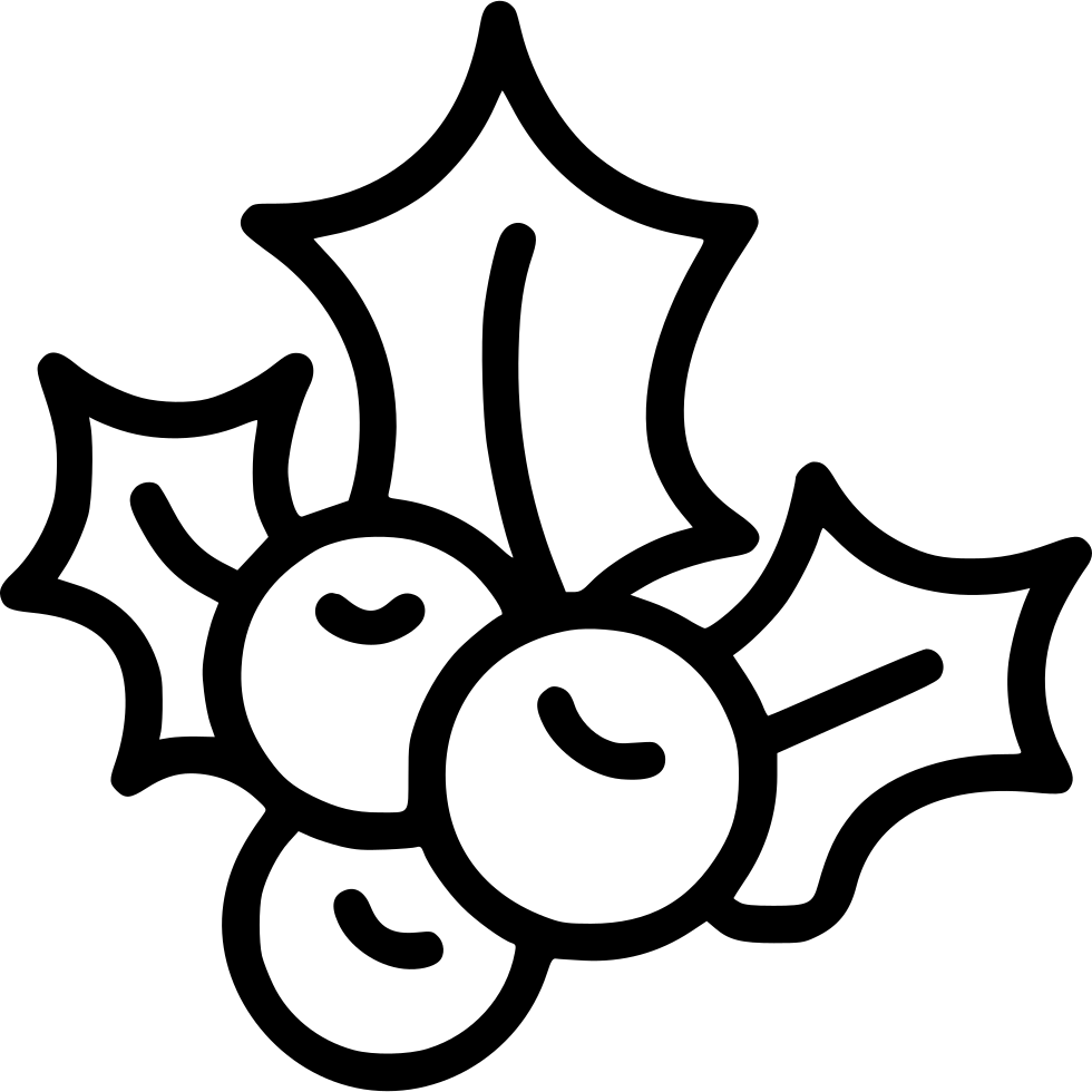 980x980 Mistletoe Svg Png Icon Free Download ( 443532)