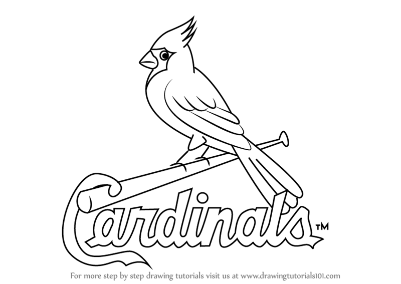 800x567 Learn How To Draw St. Louis Cardinals Logo (Mlb) Step By Step