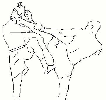 363x344 Thai Kick, Head Kick, Mma By Tonywpt