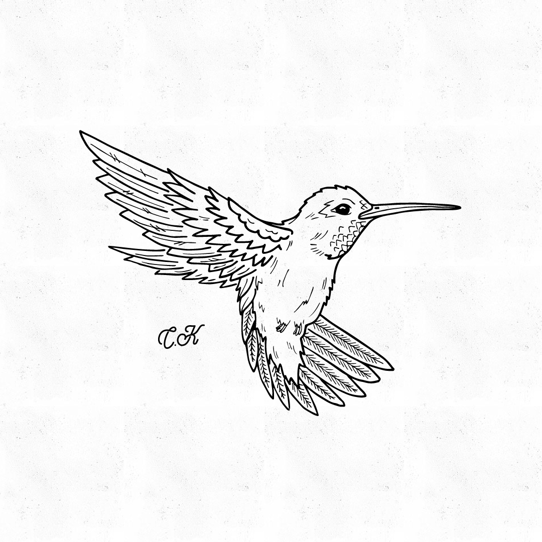 1080x1080 Hand Drawn Mockingbird Illustration Illustration