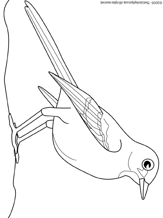 540x720 Mockingbird Audio Stories For Kids Amp Free Coloring Pages From