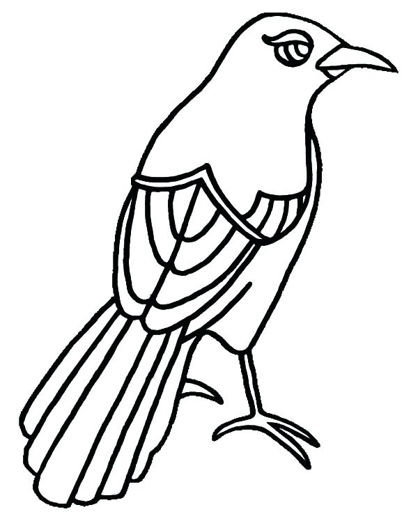 600x748 Top Texas Coloring Pages Free Download Mockingbird Has Beautiful