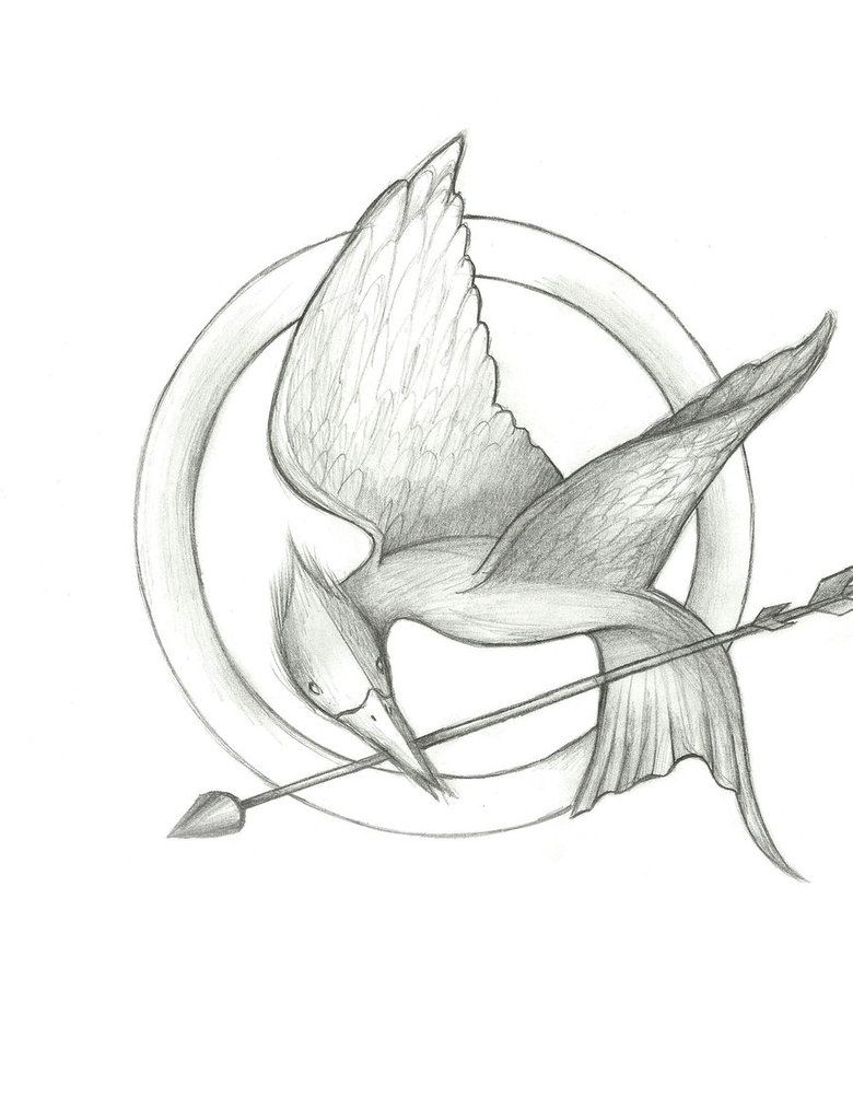 780x1024 Hunger Games Mockingjay By Sonire