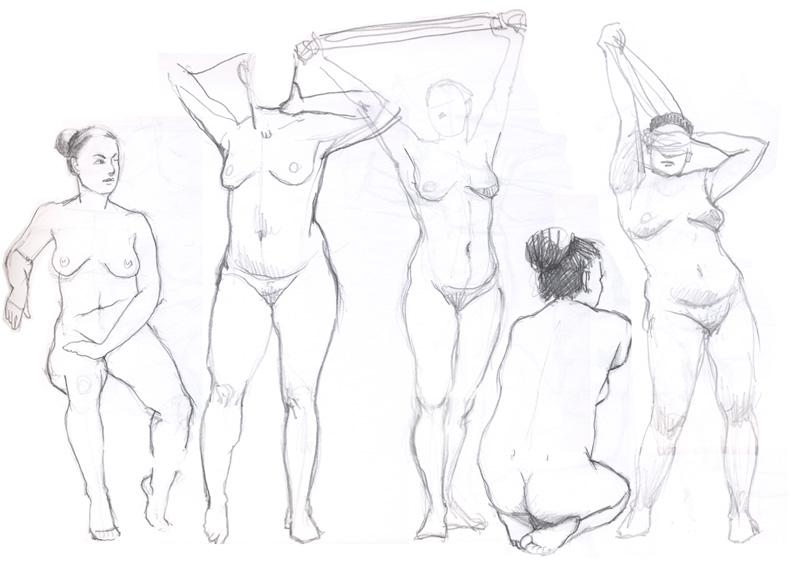 800x566 Nina Johansson Life Drawing