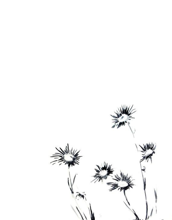 570x726 Daisy Flowers Ink Drawing Art Print, Minimalist Black And White